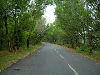 Huliyurdurga forest road