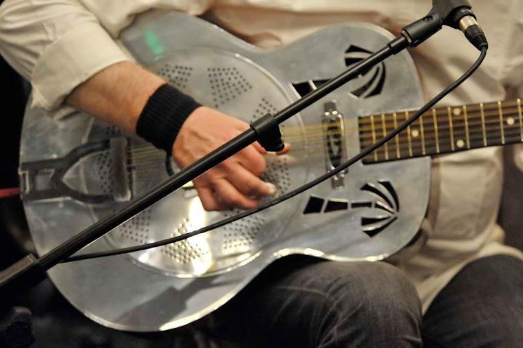 Al Hughes' 12 String Resonator