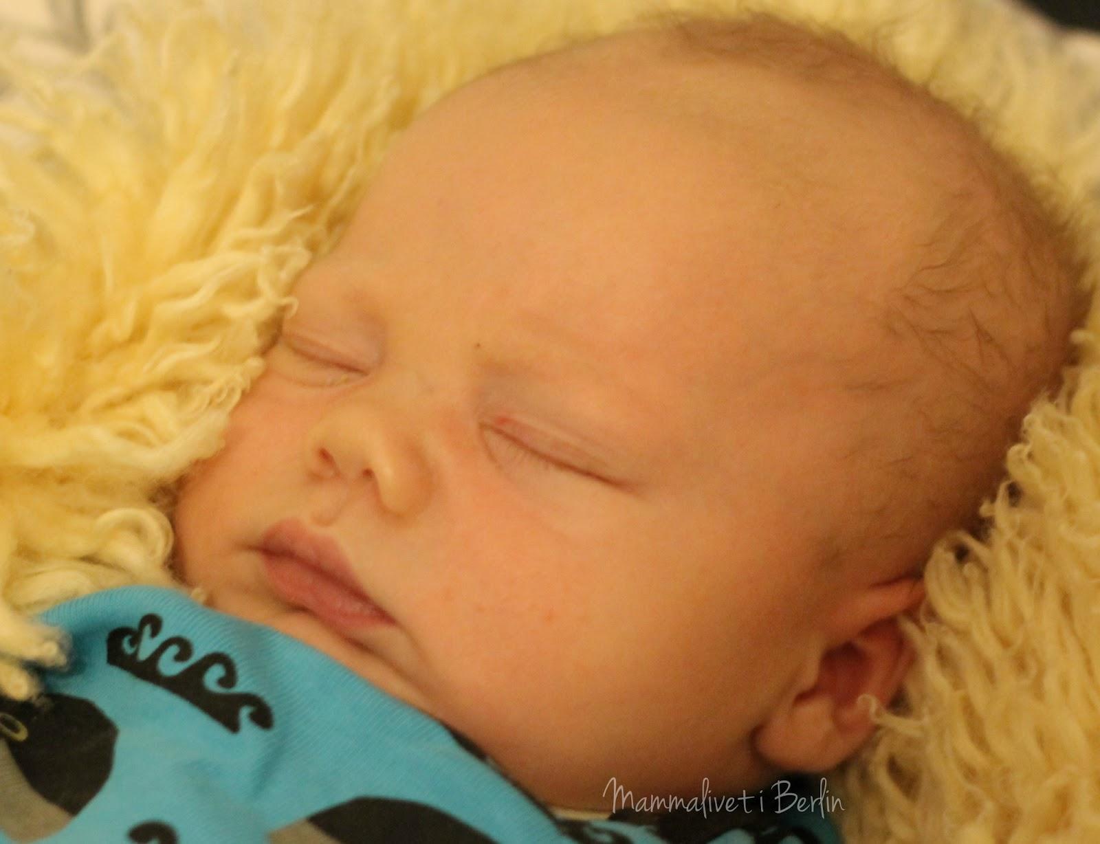 søvn hos spedbarn