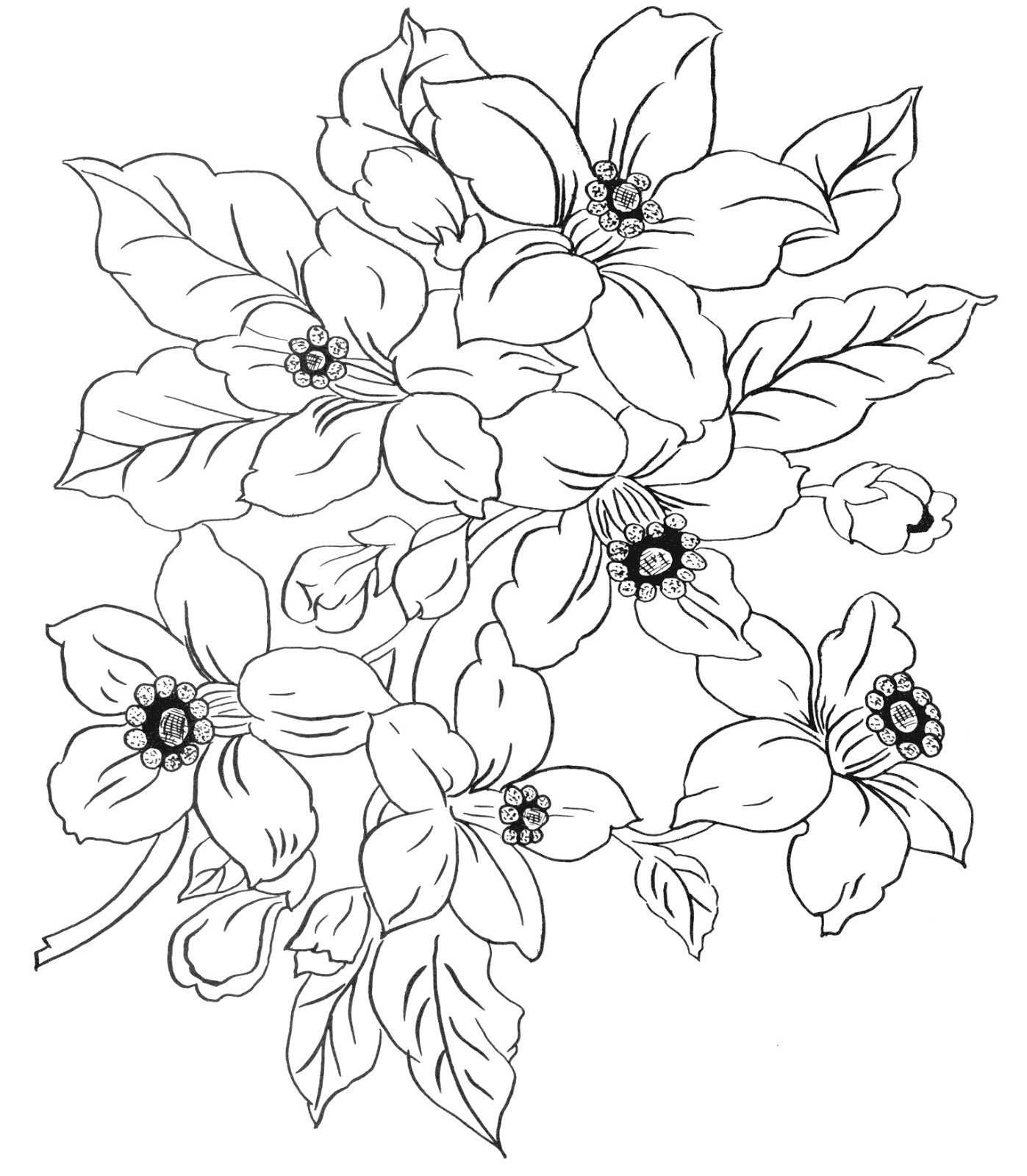 Line Drawing Flowers Blossom : Digital two for tuesday more flower designs