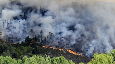 wildfires on  Spanish Canaryislands of Tenerife and La Gomera