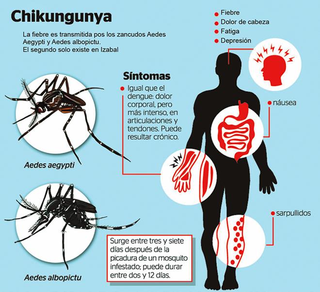 Los síntomas de la manifestación de los parásitos en el organismo de la persona