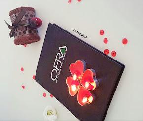 סקירה על הפלטת סמקים של חברת עפרה \ ofra professional blush makeup palette - review