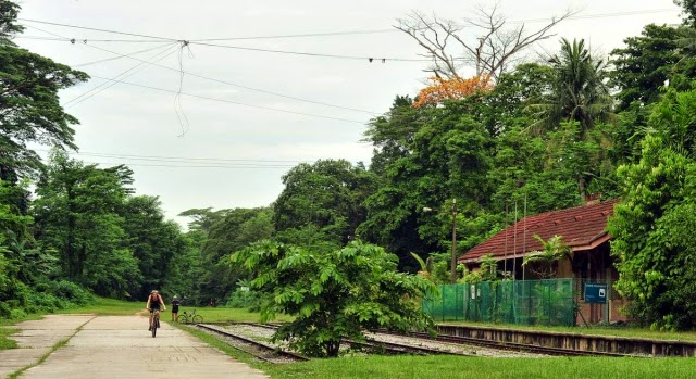 The railway corridor near the old Bukit Timah station. Cyclist and runner would paired up to compete with other pairs, running and cycling along the railway tracks (24 km x 2).