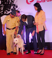 Amitabh Bachchan graces Pawsitive People's Awards