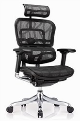 Ergo Elite High Back Chair by Eurotech