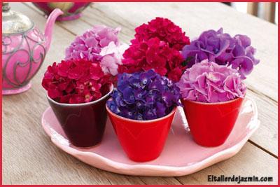souvenirs con hortensias