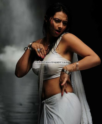 Isha Chawla latest hot saree stills