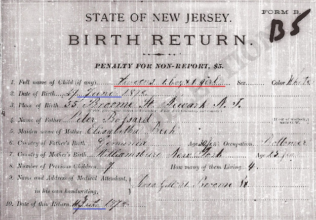 Family History Research by Jody Lutter: Birth Certificate of Twins