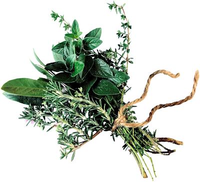 container gardening rosemary oregano herbs