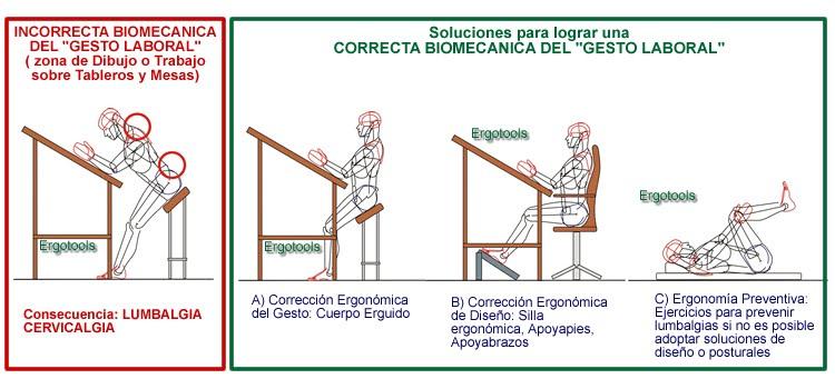 Diego david mayo 2011 for Antropometria y ergonomia