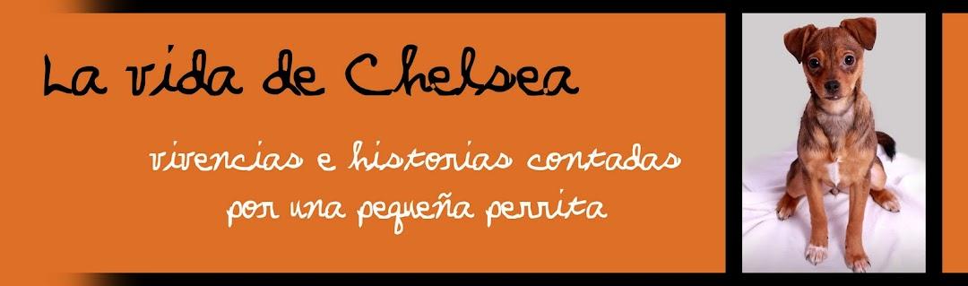 La vida de Chelsea