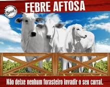 VACINAÇÃO FEBRE AFTOSA - CLIQUE AQUI