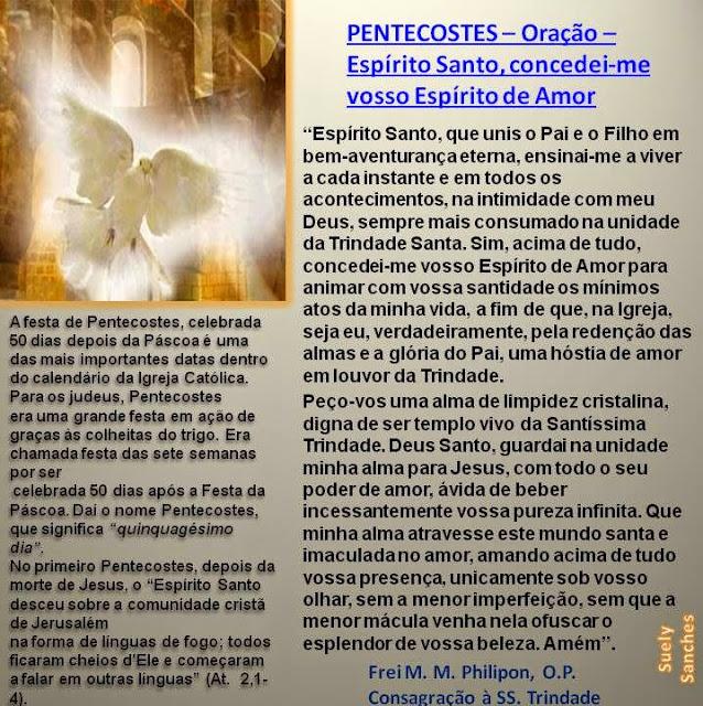 Comunidade Católica Milagre da Vida: PENTECOSTES