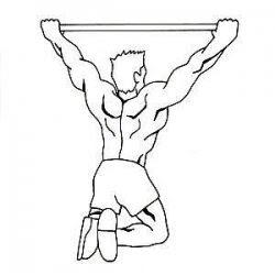 Trucs et astuces pour maigrir: Exercice de base : Traction