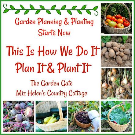 Garden Planning & Planting