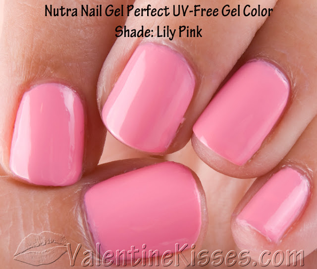nutra nail gel perfect instructions