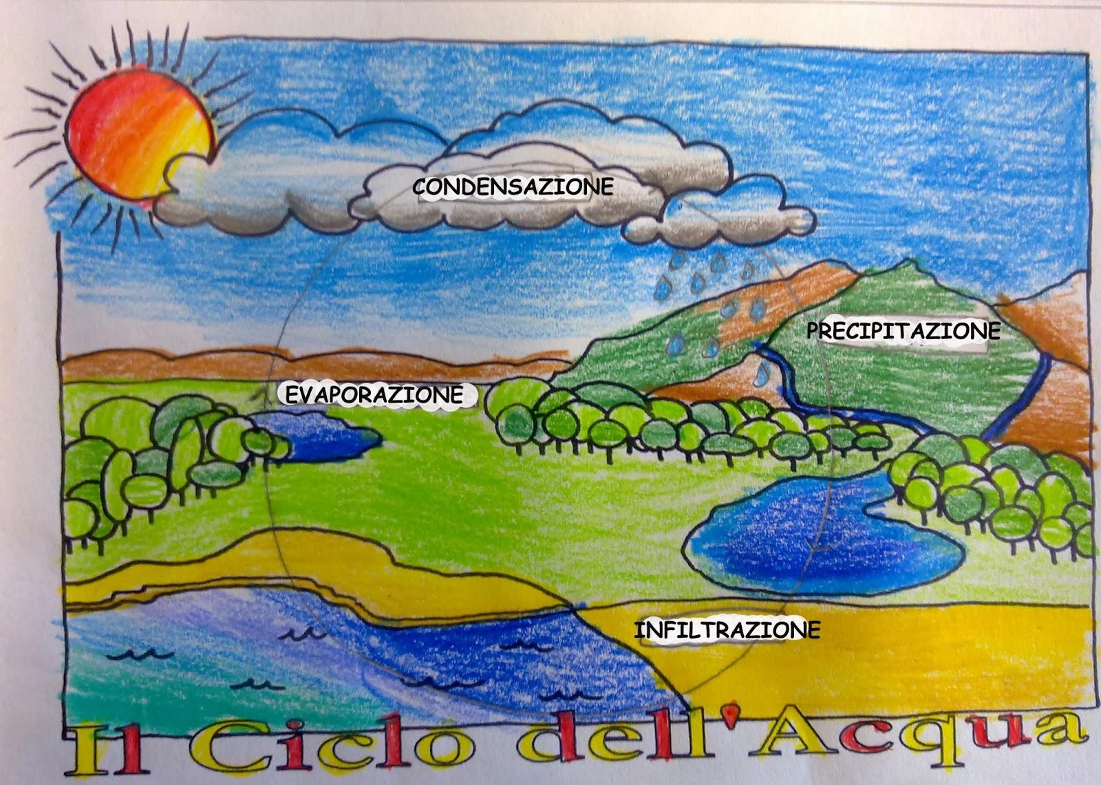 Top Bacheca scuola Primaria: Il ciclo dell'acqua illustrato dagli  PC69