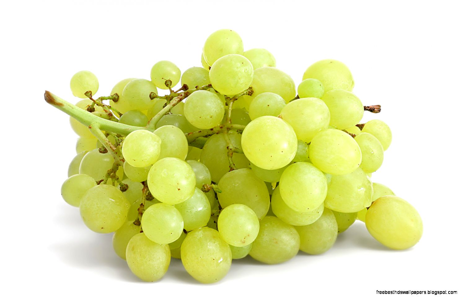 White Grape Free Best Hd Wallpapers