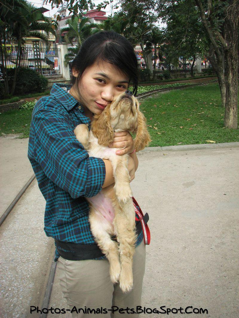 http://3.bp.blogspot.com/-ZDpA5zPQU1s/TbWUOVceZGI/AAAAAAAAAzo/bWgkA3HbeTY/s1600/Cute%2Bdog_0002.jpg