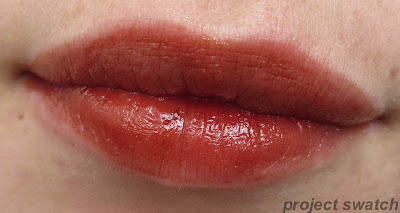 192 Everlasting Caramel shine caresse lip swatch