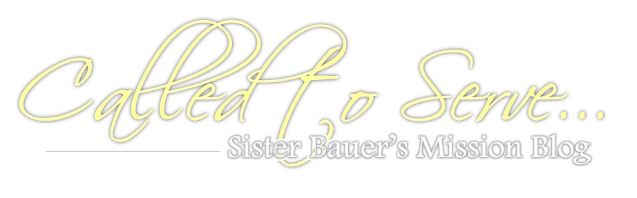 Called to Serve: Sister Bauer's Mission Blog