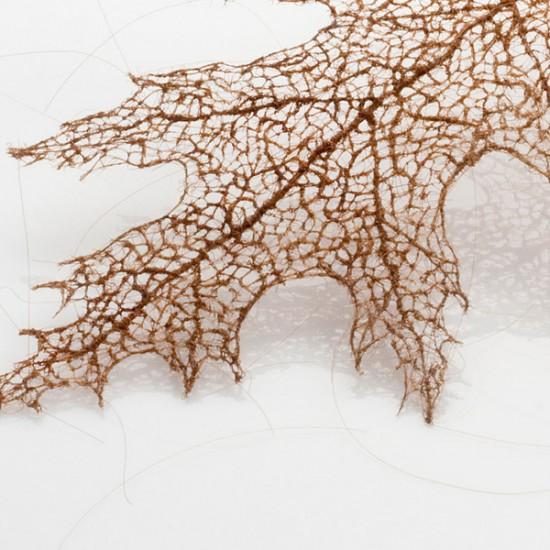 لوحات فنية لأوراق الشجر وبعض الأعمال الفنية من شعر  Human-hair-leaves-550x550