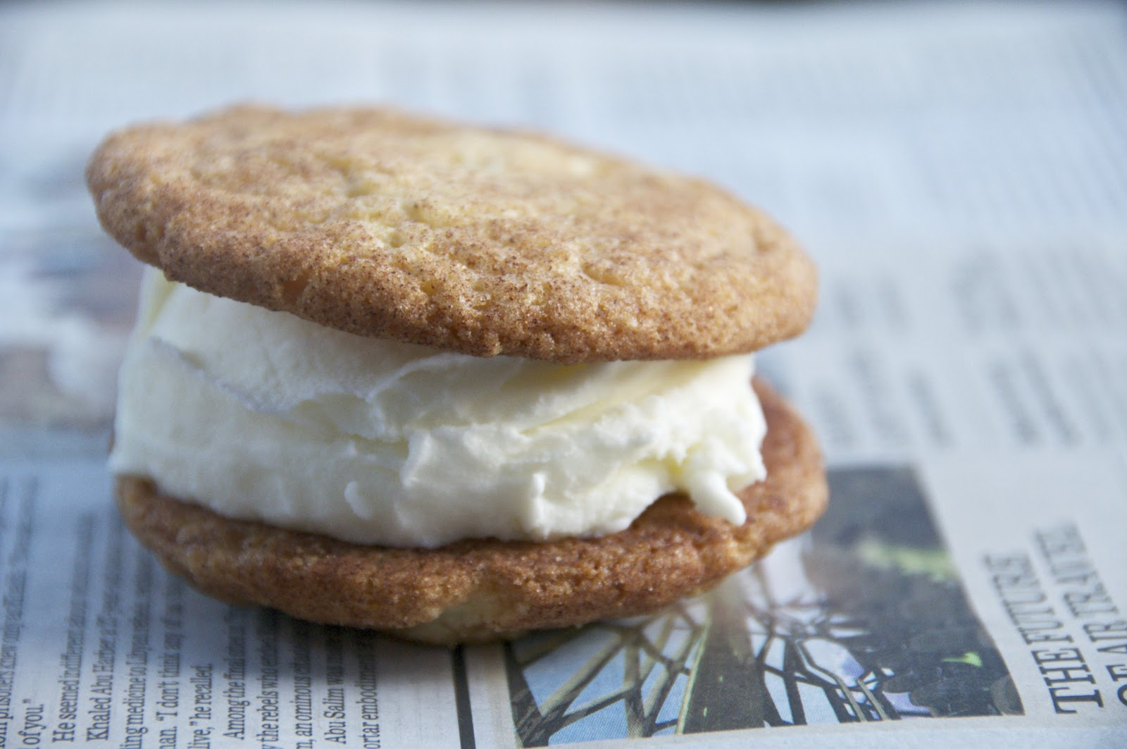 see you in the morning: snickerdoodle coconut ice cream sandwiches