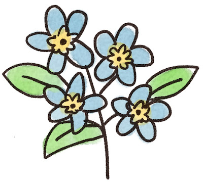 忘れな草のイラスト(花)