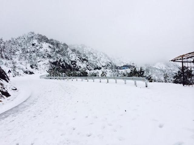 Tuyết trắng Sa Pa