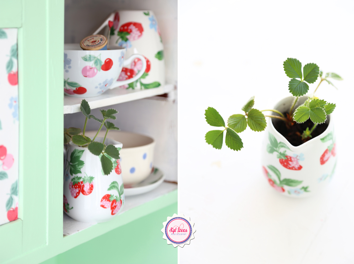 Syl loves, Sylloves, Cath Kidston, Strawberries, minty mint