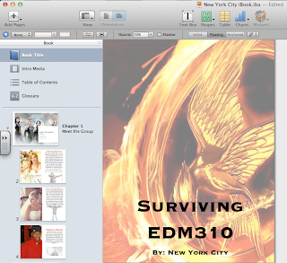 Screen Shot of iBook Author