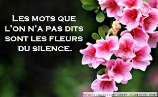 Citation en image sur la silence