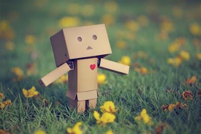 love danbo