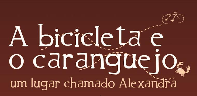 A bicicleta e o caranguejo