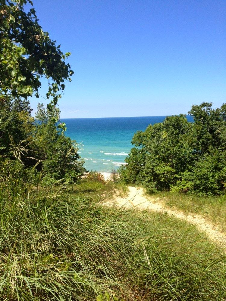 https://alltrails.com/trail/us/indiana/indiana-dunes-state-park-trail-8