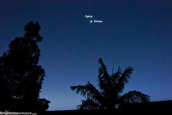 Tips Membedakan Planet dan Bintang di Langit Malam