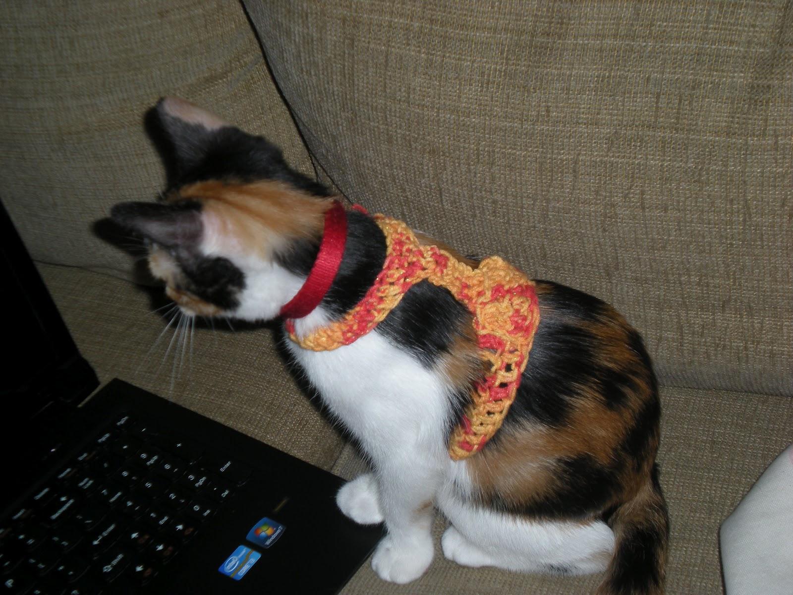 Nyanpon Kitty Harness Recipe