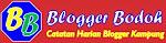 Blogger Bodoh