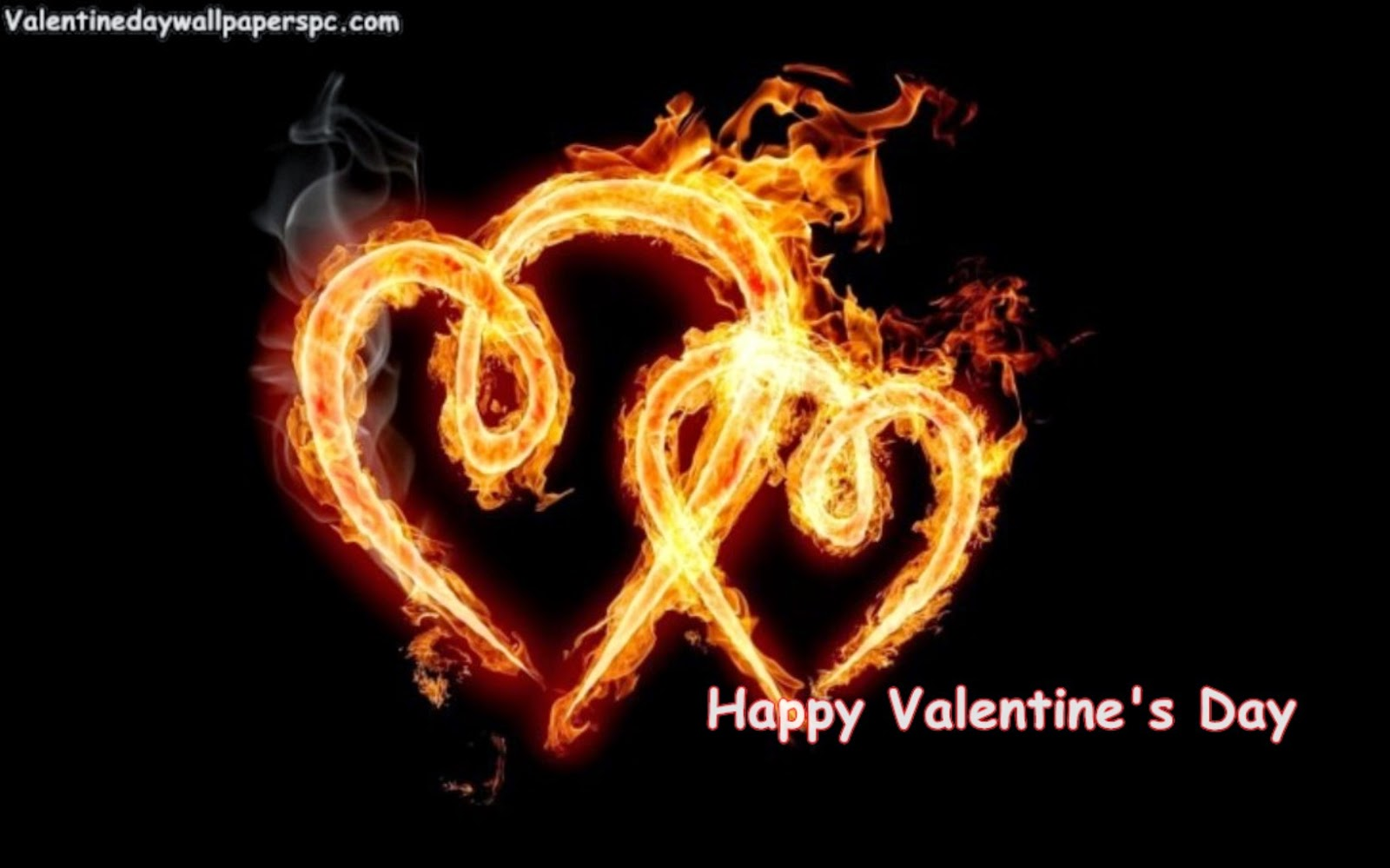 Valentines Day HD Wallpapers