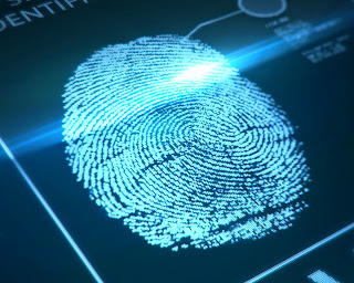 Digitized fingerprints.
