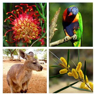 australian flora and fauna Australia's unusual fauna and flora is due to the continent having been isolated for millions of years continental drift tore australia away from africa and antarctica and sent it on a 45 million year journey northwards the original mammal passengers on this journey were the marsupials and egg layers (the monotremes.