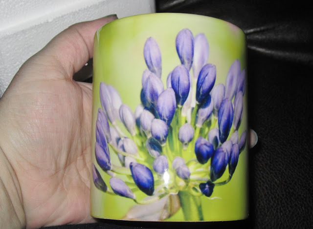 mailpix mug
