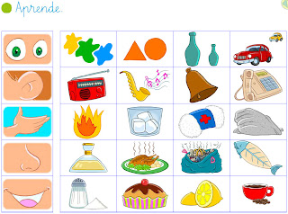 El blog de primero recuerda los 5 sentidos for Mural de los 5 sentidos