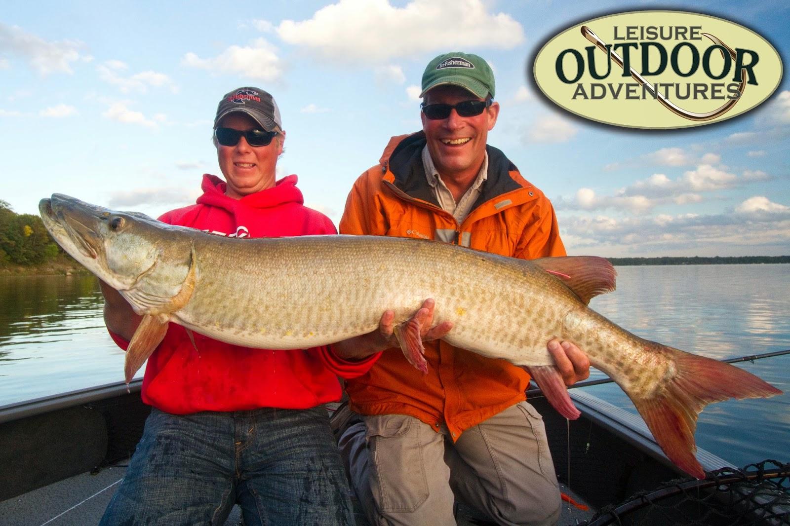 Leisure outdoor adventures minnesota musky guide report for Muskie fish teeth