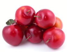 Erase un blog recetario erase una variedad de ciruelas for Ciruela santa rosa