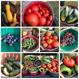 A nice harvest!