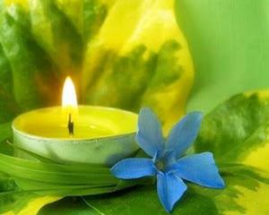 Mantengamos encendida la vela contra el cáncer.24 nov 2011