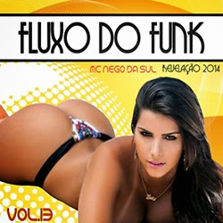 Fluxo Do Funk - Vol.13