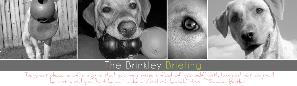 The Brinkley Briefing